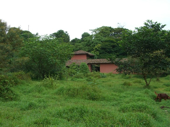 Hacienda im Dschungel