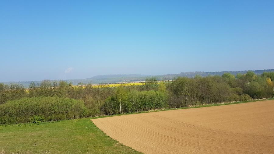 Marienfeld im Rhein-Erft-Kreis
