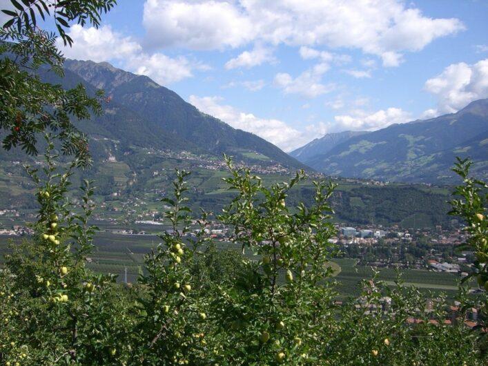 Blick vom Marlinger Waalweg hinüber Richtung Dorf Tirol