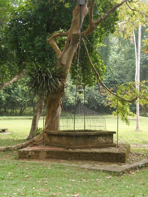 ein Baum mit einem Gong davor