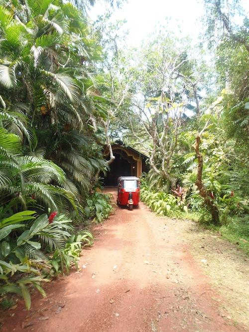 rotes Tuk Tuk auf einer schmalen Straße im Urwald