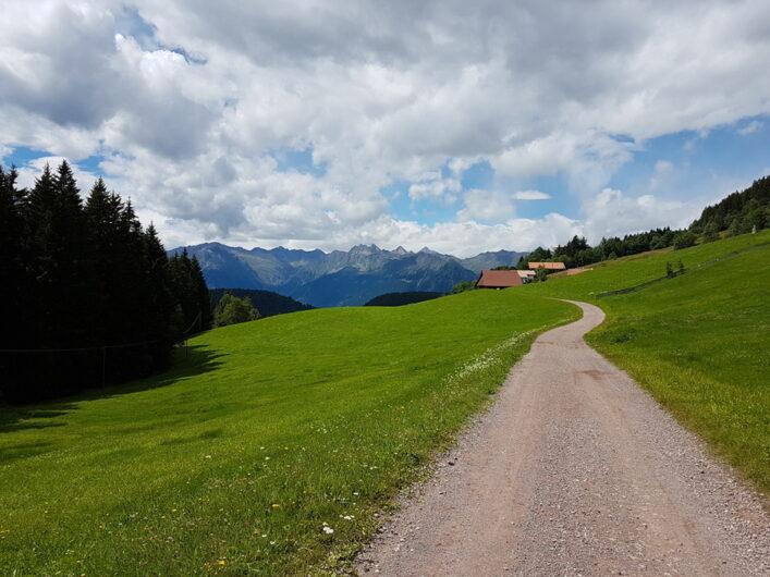 Weg zwischen Wiesen, in der Ferne der Blick auf die Südtiroler Berge