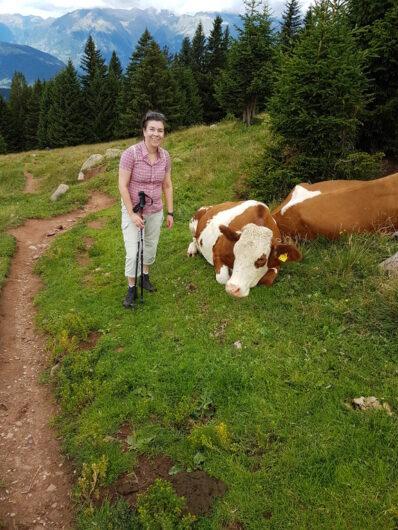 ich stehe neben liegenden Kühen