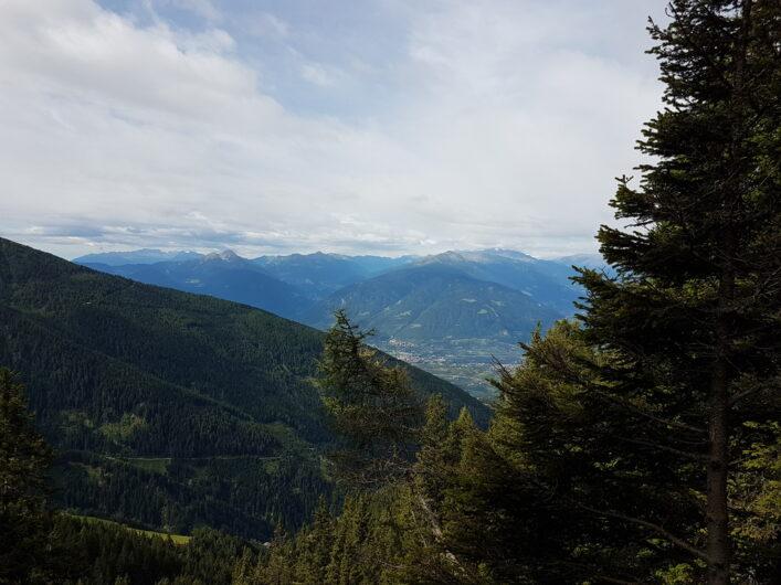 Zwischen den Bäumen eröffnet sich der Blick auf die gegenüberliegenden Gipfel
