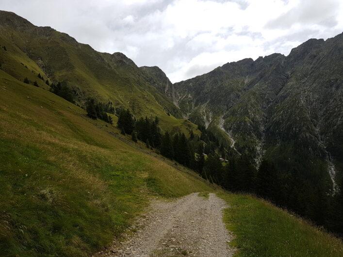 Forstweg von der Assenhütte in Richtung Videgg