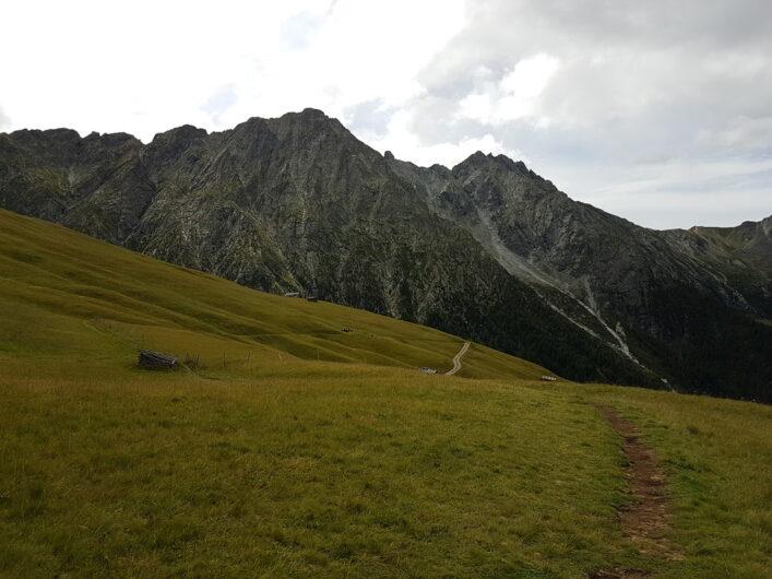 Weg durch die Wiesen der Videgger Assen und Blick auf das Bergmassiv des Ifinger
