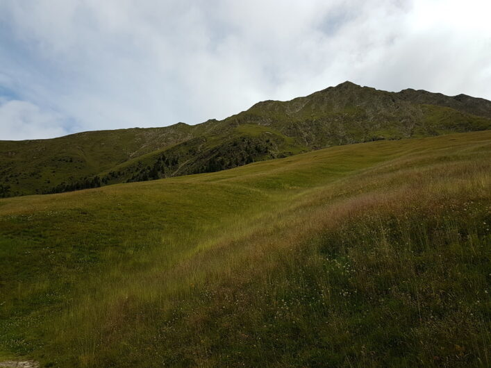 Der Blick geht hoch auf die Wiesen der Videgger Assen und den Gipfel des Hönig
