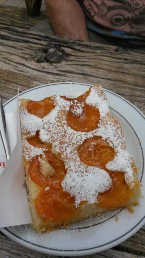 ein Stück Aprikosenkuchen beim Brunjaunhof