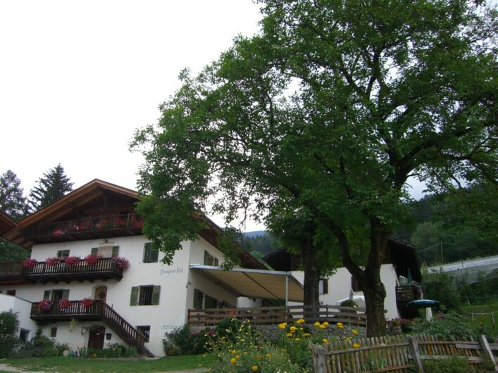 der alte Brunjaunhof mit der großen Kastanie daneben