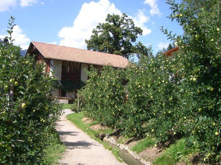 Der Schenner Waal am Brunjaunhof mitten zwischen Apfelplantagen.