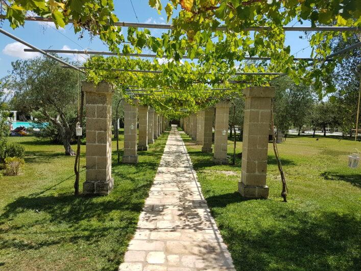 Weg unter Weinreben hindurch vom Poolbereich in den Garten