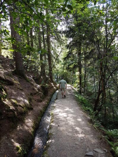 Spaziergang am Schenner Waalweg