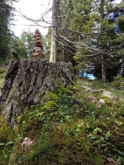 Baumstumpf mit Steinpyramide oben drauf am Wanderweg