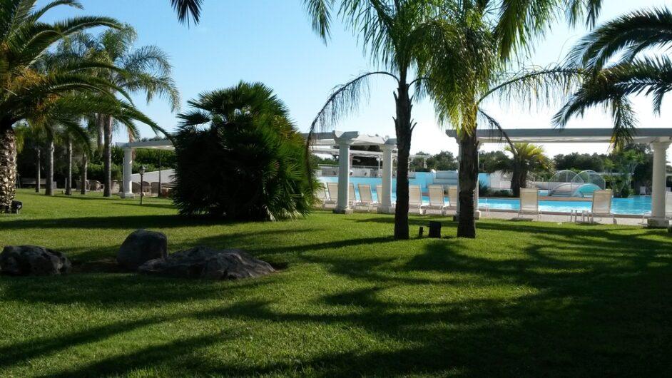 der große Poolbereich mit Liegewiese und Palmen