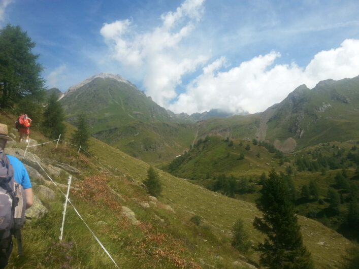 Weg hinauf zum Erlebnisbergwerk Schneeberg vorbei an saftigen Wiesen