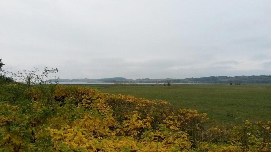 Blick in Richtung Bodden in Thiessow