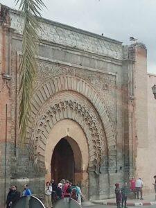 Storch in Marrakesch