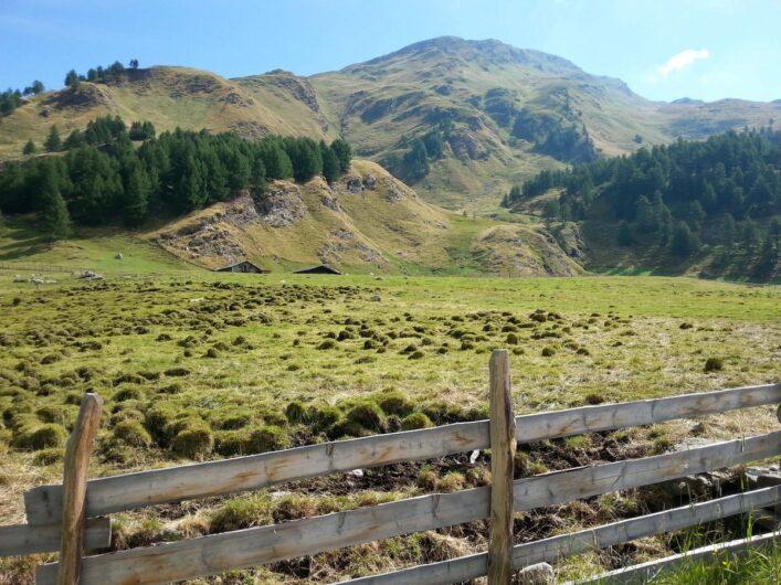 Beginn der Wanderung zwischen Wiesen und mit Blick auf die Berge