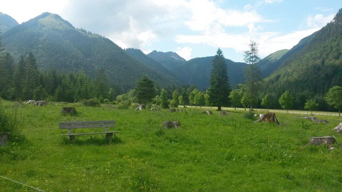 Wiesen direkt hinter dem Parkplatz Karwendeltäler