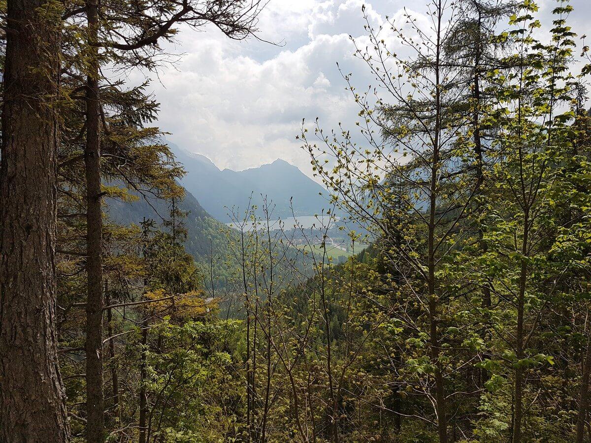 Blick durch die Bäume hindurch auf Pertisau und den Achensee