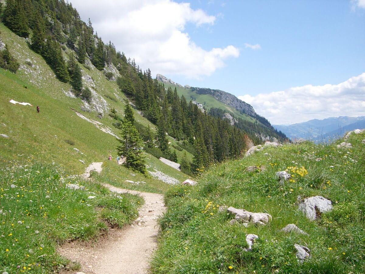 weg am Berghang von der Dalfaz Alm zurück zur Rofan-Seilbahn