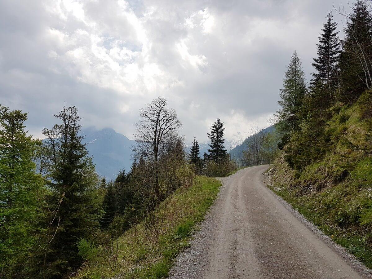 breiter Forstweg hinauf zur Feilalm