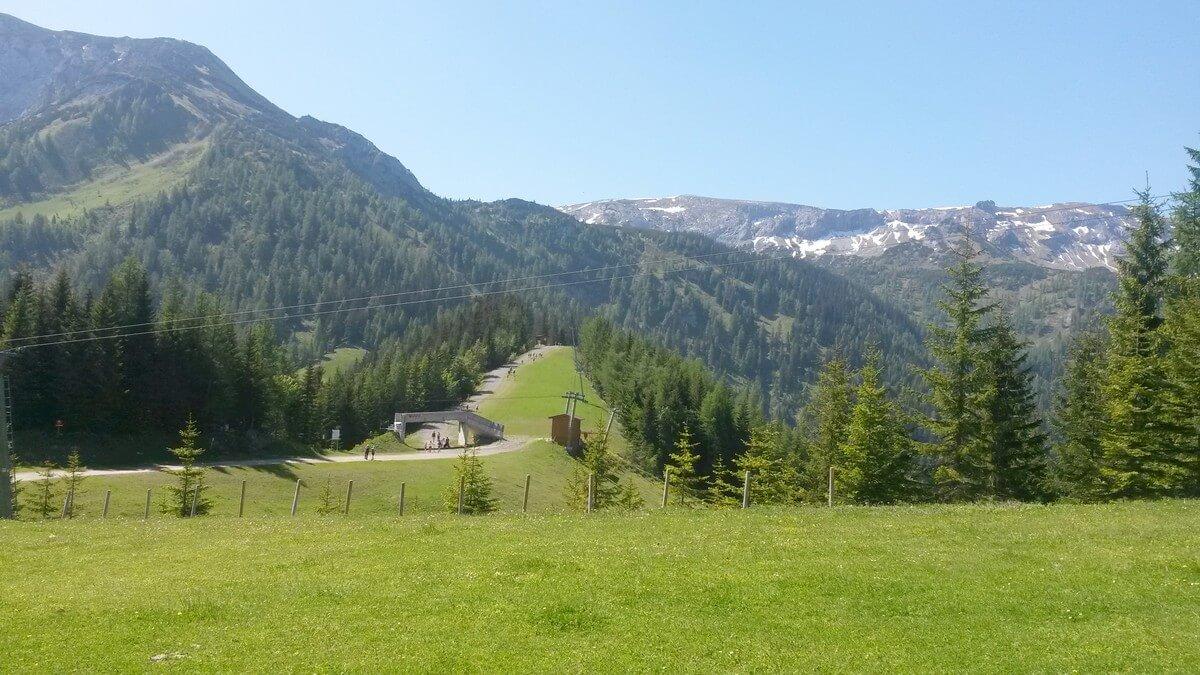 Blick im Sommer über die Skipiste am Zwölferkopf in Pertisau