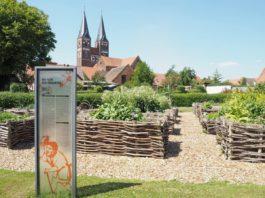 Blick auf den Kräutergarten und das Kloster Jerichow