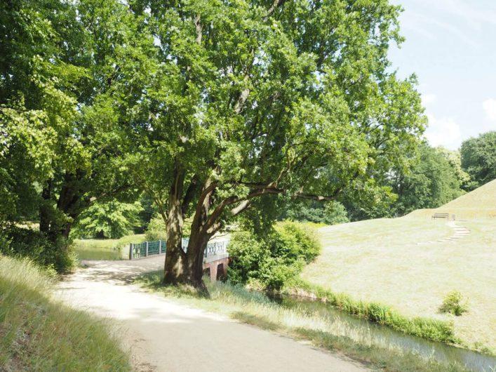 Weg zu einer Brücke im Park Branitz