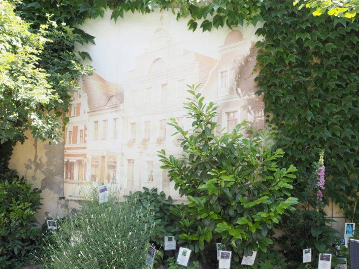 Wandbild im Innenhof des Brandenburgischen Apothekenmuseums in Cottbus