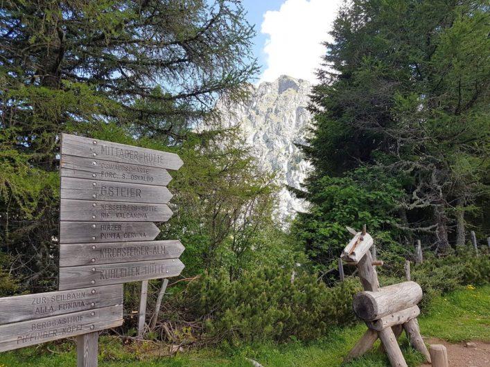Wanderwegweiser auf Meran 2000 mit dem Ifinger im Hintergrund
