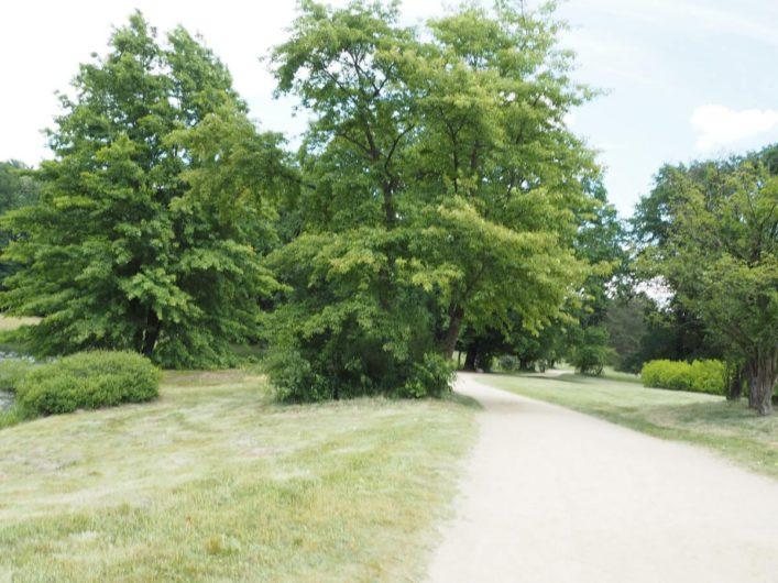 Weg durch den Branitzer Park in Cottbus