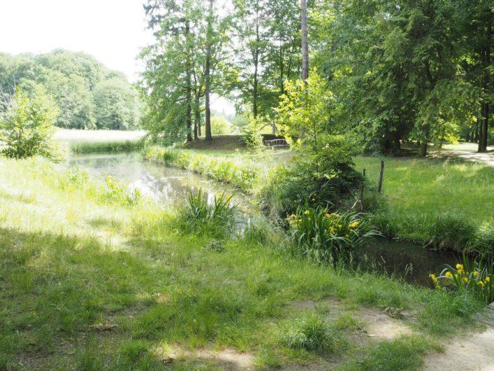 unterwegs im Park Branitz