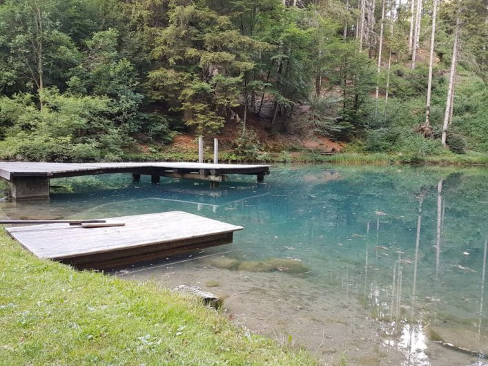 Naturbadeteich des Biohotel daberer in Kärnten