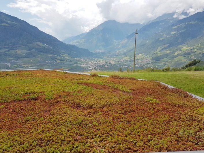 Ausblick aus der Juniorsuite im Hotel Sonnbichl in Dorf Tirol