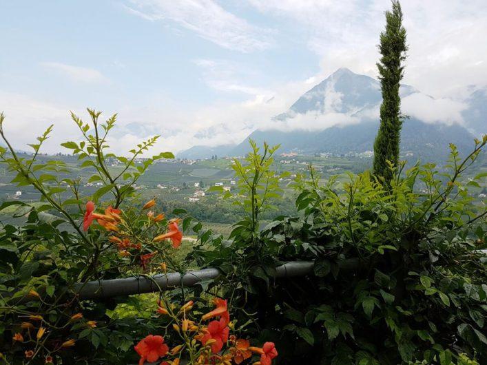Blick Richtung Dorf Tirol
