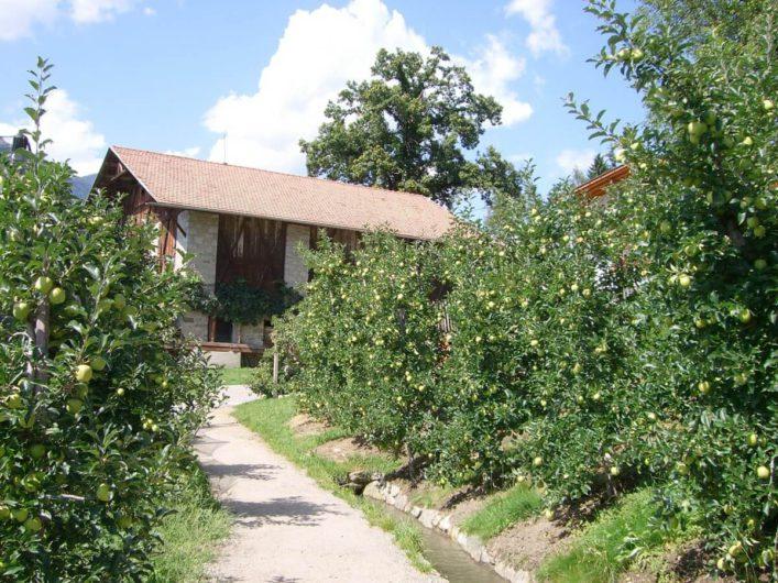 Brunjaunhof am Schenner Waalweg der mitten durch die Apfelgärten hindurchführt