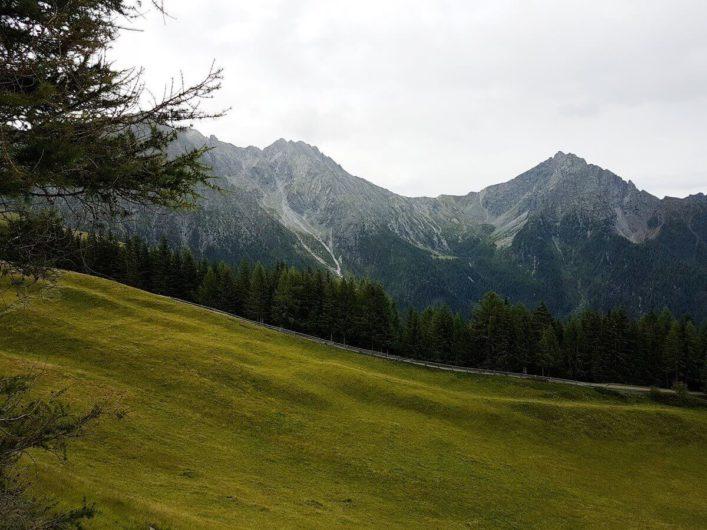 Blick Richtung Ifinger kurz vor der Stafellhütte