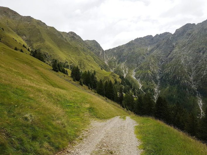 Wanderweg von den Videgger Assen Richtung Videgg