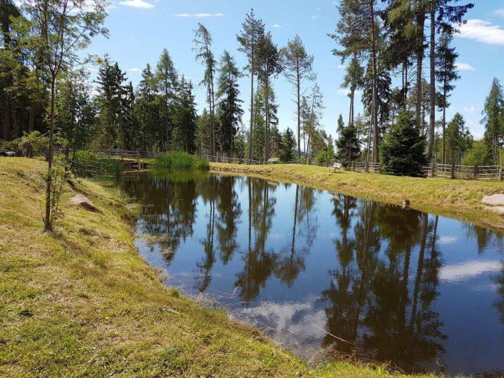kleiner See auf dem Weg zur Wurzer Alm
