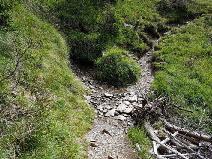 schmaler Wanderweg in Richtung Assen oberhalb der Stafellhütte
