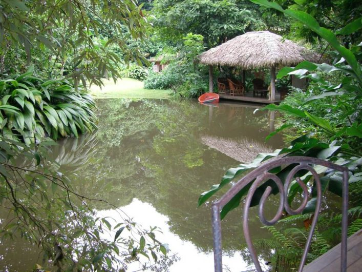Teich der Lodge in Costa Rica