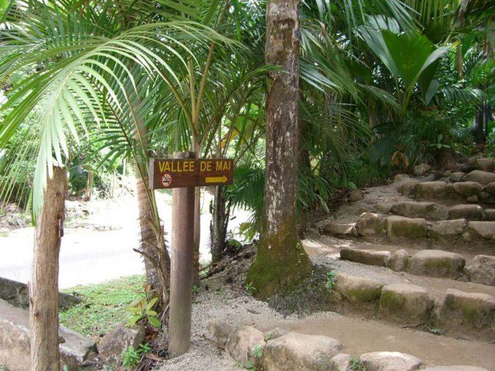 Vallée de Mai auf Praslin