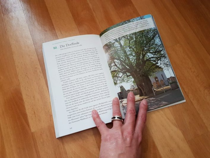 Kapitel über die Dorflinde