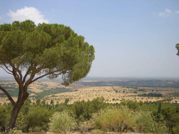 Blick auf die Ebene rund um Castel del Monte