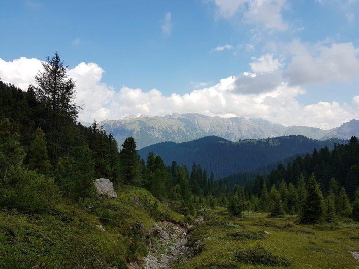 Ausblick vom Adolf-Munkel-Weg
