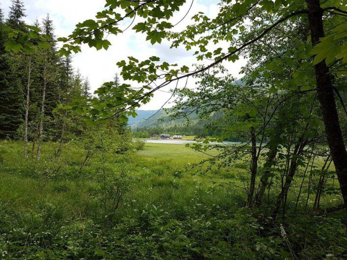 vom anderen Seeufer ist der Gasthof Jägersee zwischen den Bäumen zu sehen