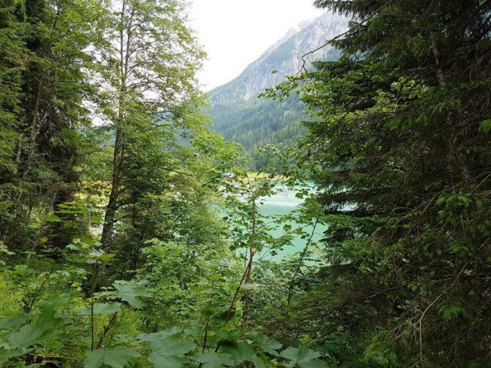 der Jägersee schimmert grünlich zwischen den Bäumen