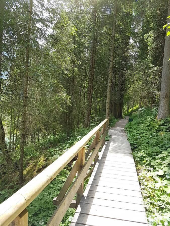 hölzerner Steg im Wald auf der Runde um den Jägersee im Salzburger Land