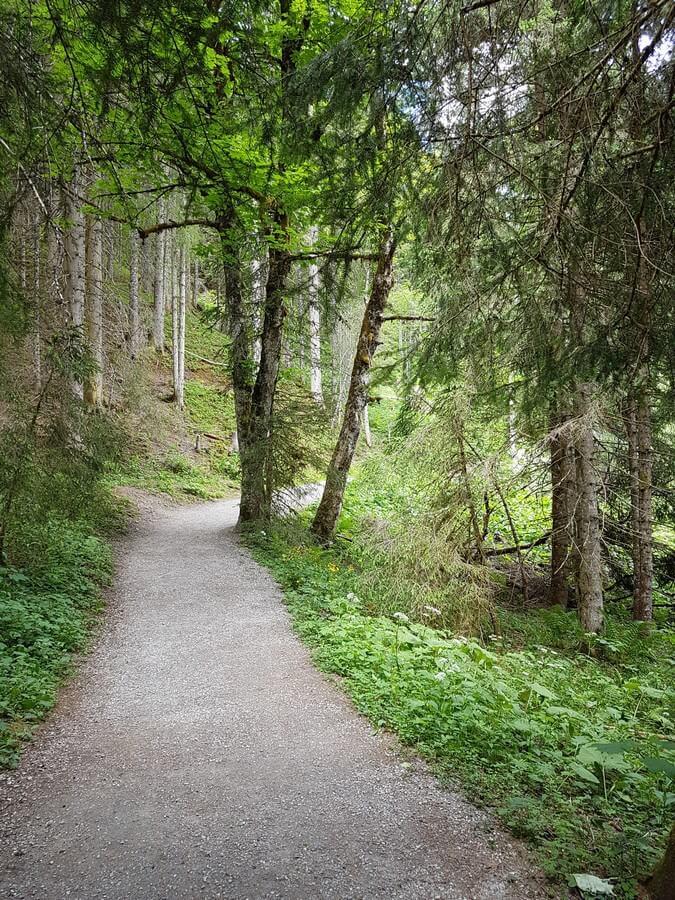 Waldweg auf der Runde um den Jägersee